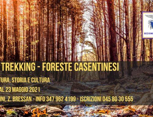 21-22-23 MAGGIO 2021 – TREKKING NEL CUORE DEL PARCO NAZIONALE DELLE FORESTE CASENTINESI
